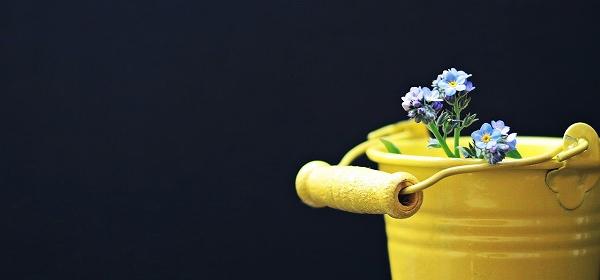 黄色いバケツ