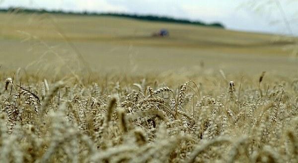 農機と稲穂