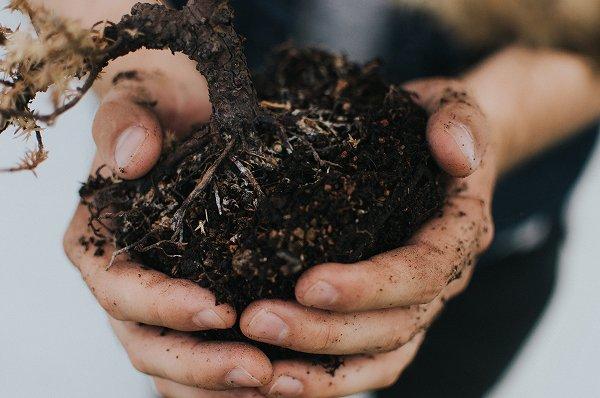 土壌改良資材