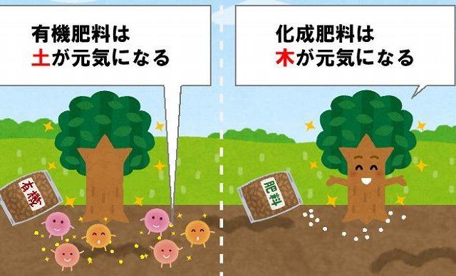 有機肥料と化成肥料の違い 土が元気