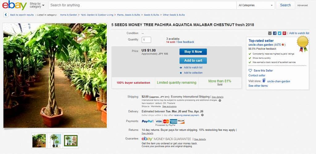 パキラeBay購入ページ