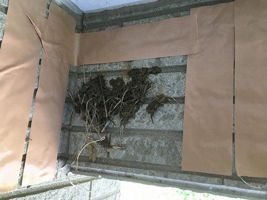 バルコニーのツバメの巣