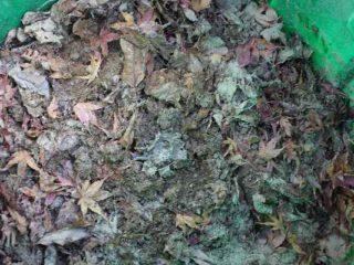 腐葉土の作り方