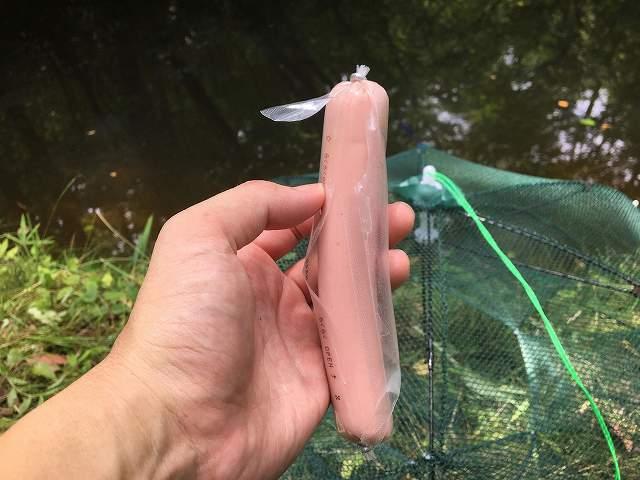 ザリガニ釣り 餌